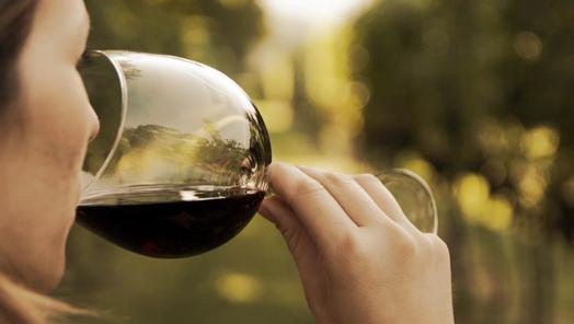 Cata vino Ribera del Duero
